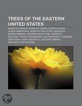 Trees of the Eastern United States