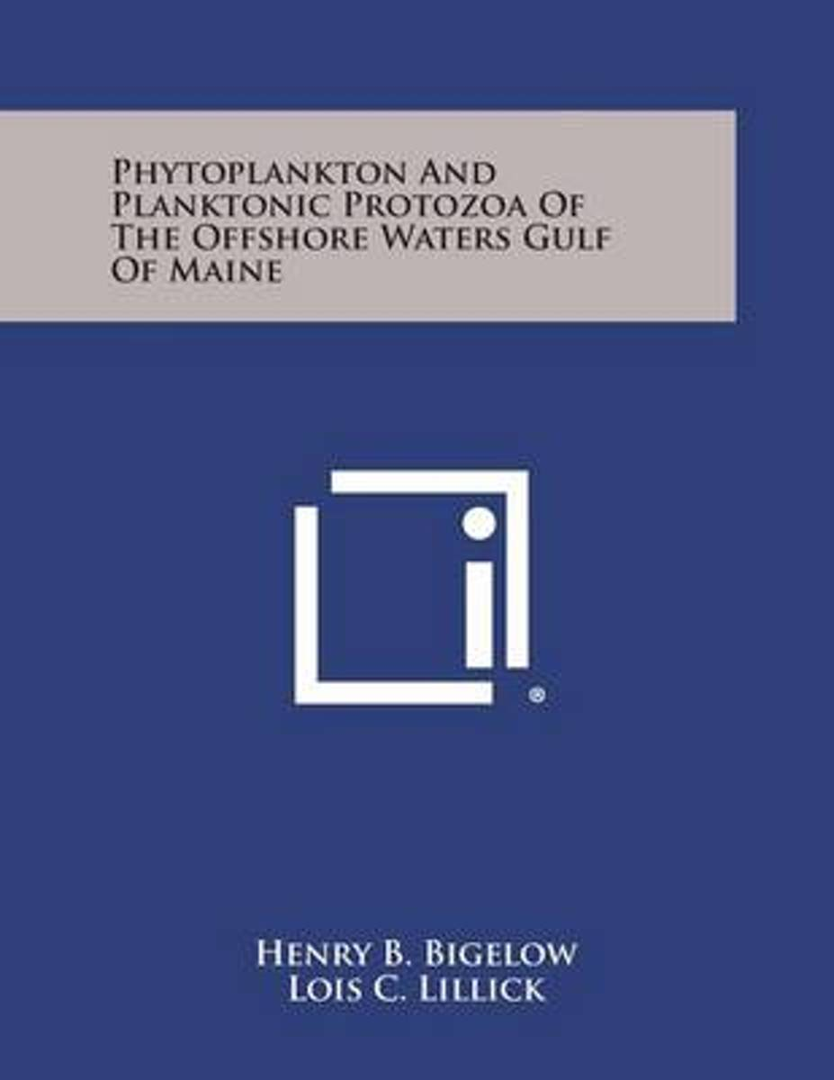 Phytoplankton and Planktonic Protozoa of the Offshore Waters Gulf of Maine