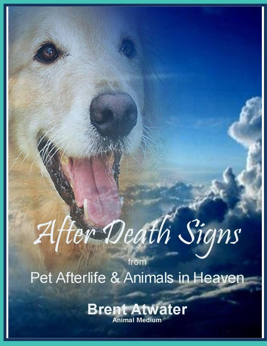 After Death Signs from Pet Afterlife and Animals in Heaven