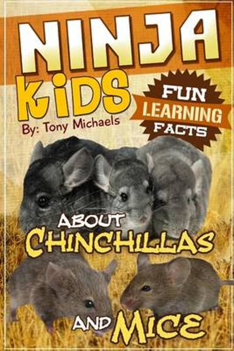 Fun Learning Facts about Chinchillas and Mice