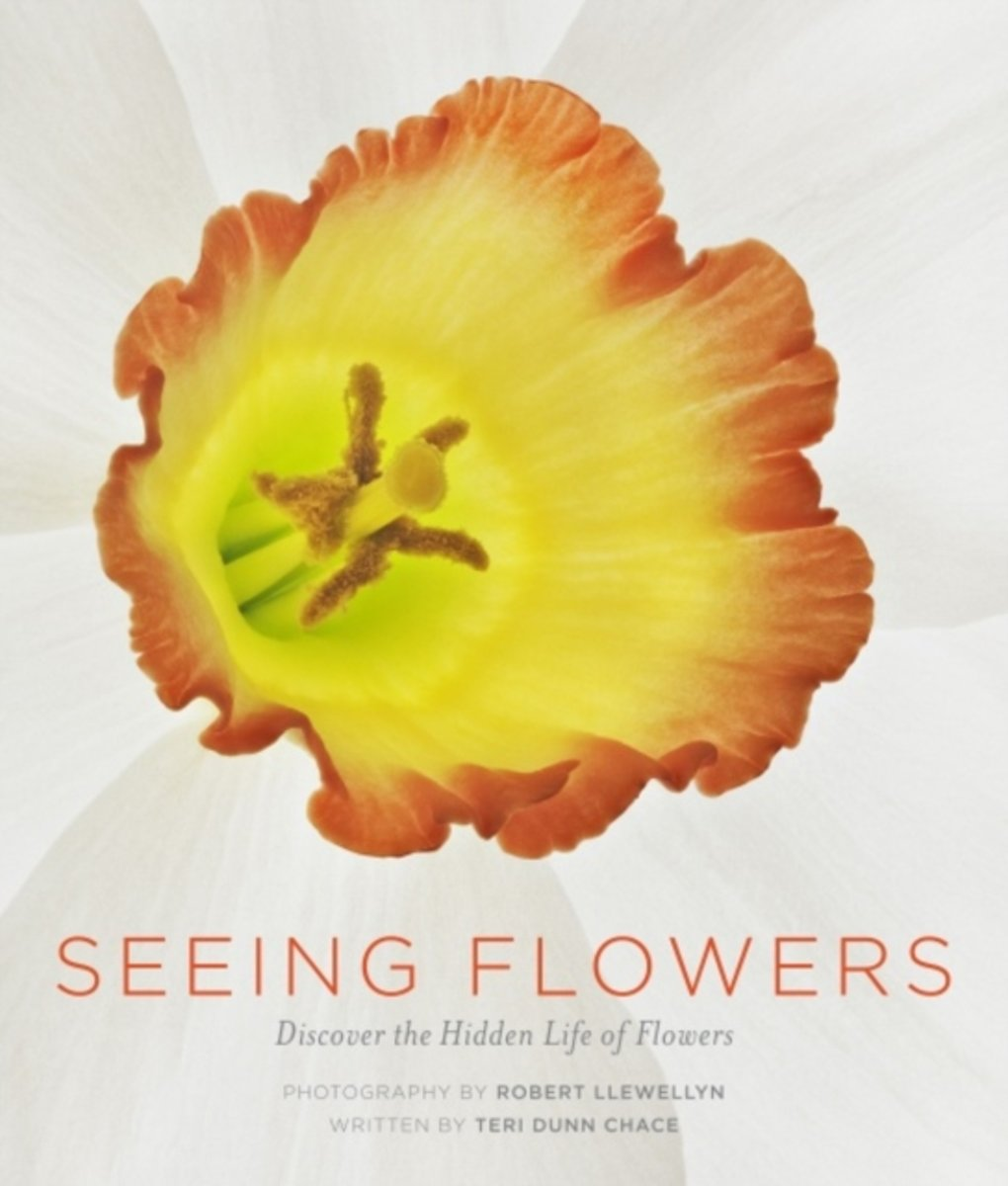 Seeing Flowers Discover the Hidden Life of Flowers