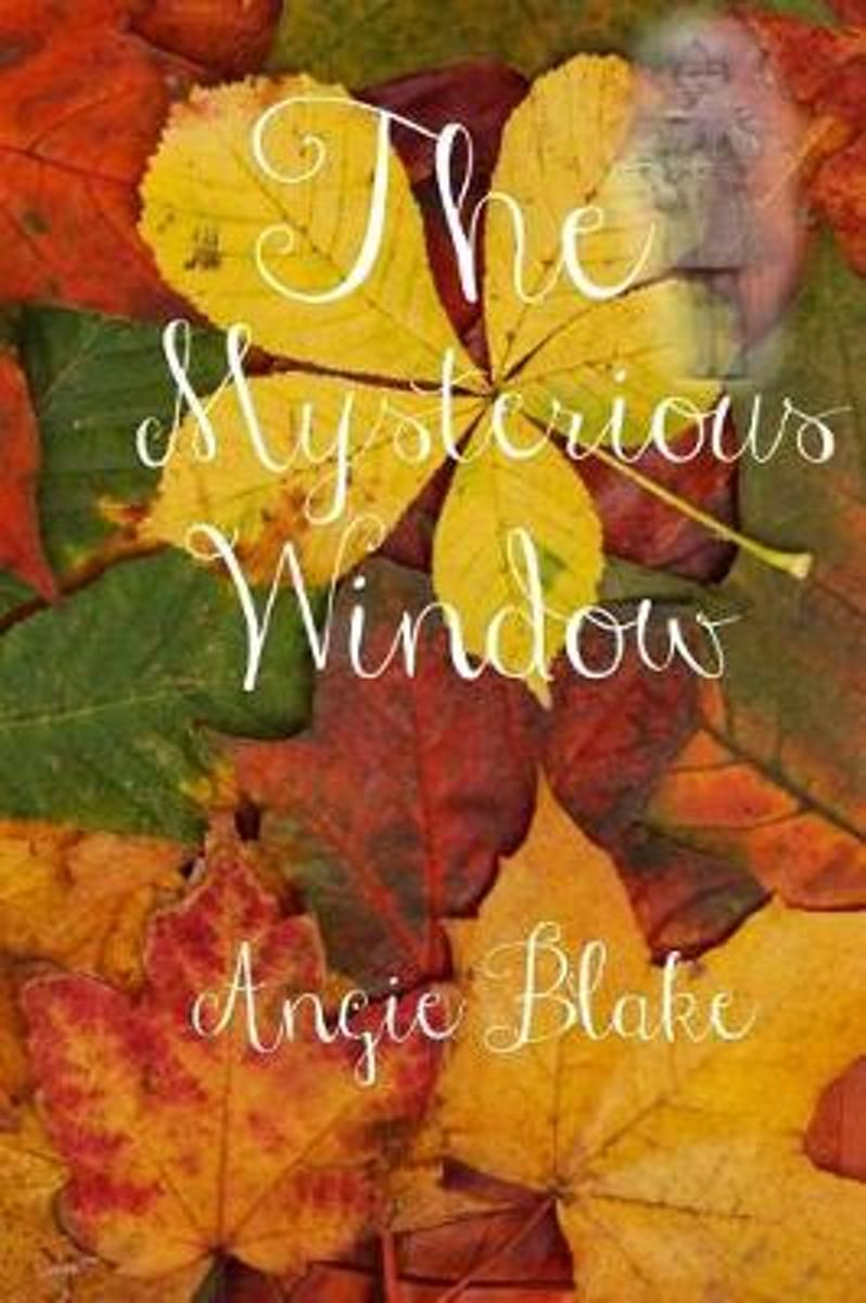The Mysterious Window