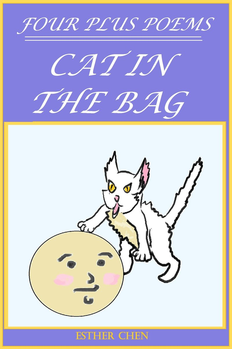Four Plus Poems: Cat In The Bag