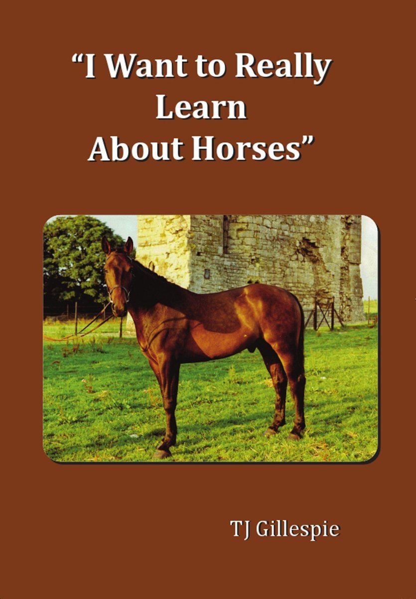 I Want to Really Learn about Horses