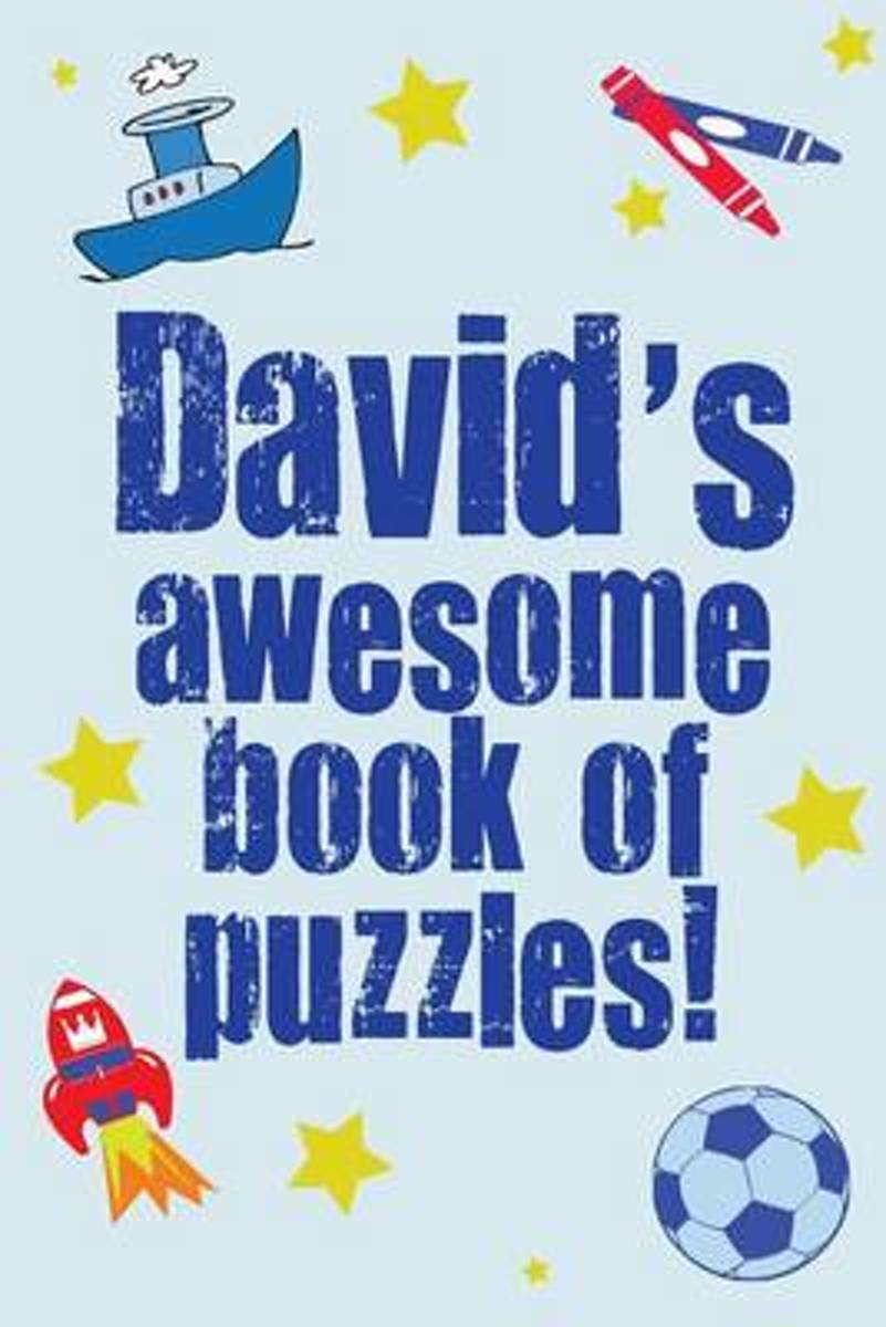 David's Awesome Book of Puzzles!
