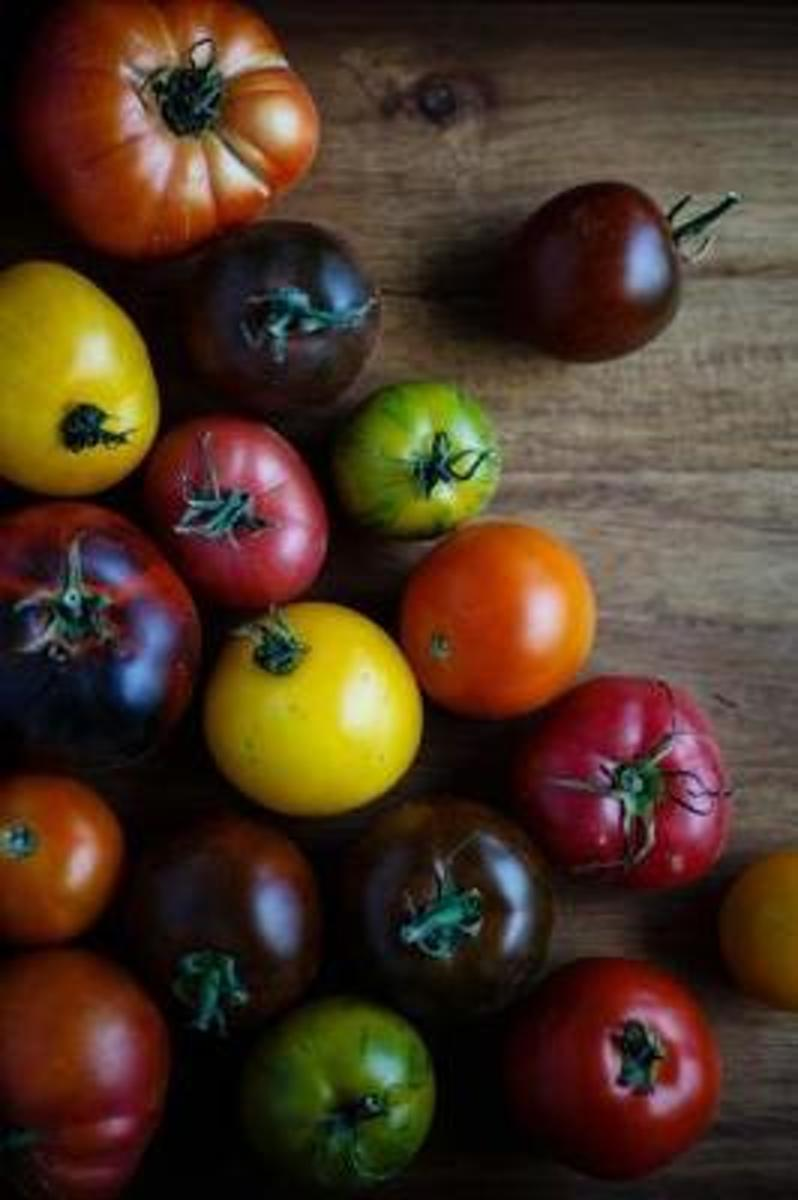 A Variety of Colorful Heirloom Tomatoes Garden Journal
