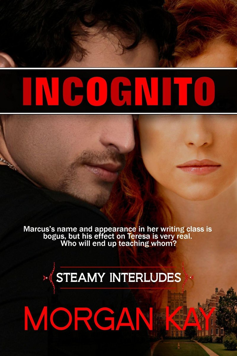 Incognito: Dating the Enemy