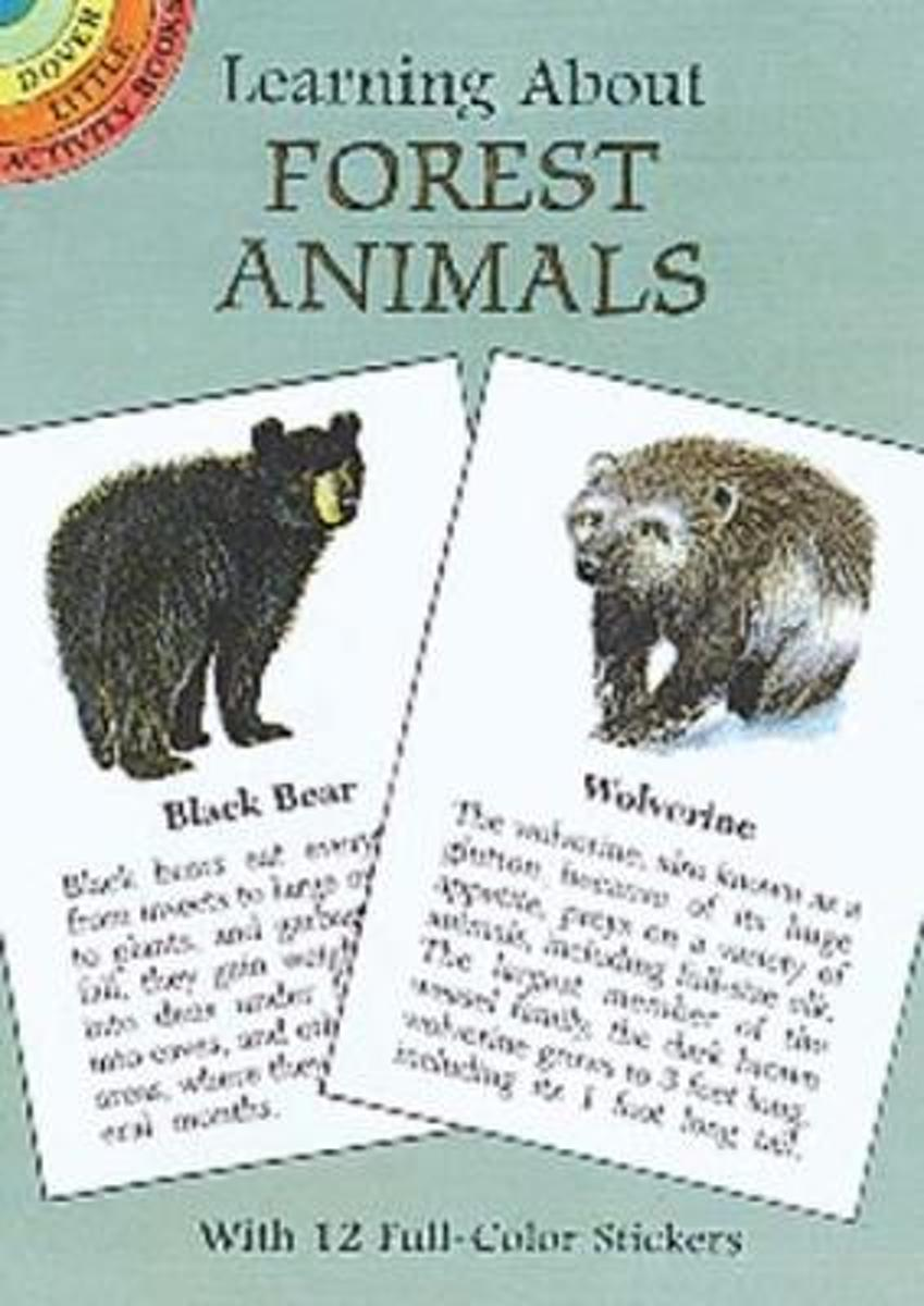 Learning About Forest Animals