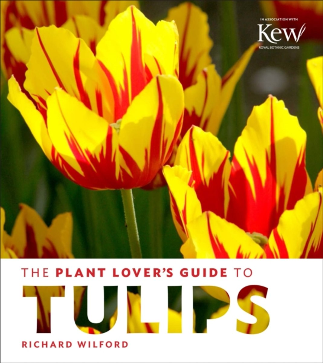The Plant Lovers Guide to Tulips