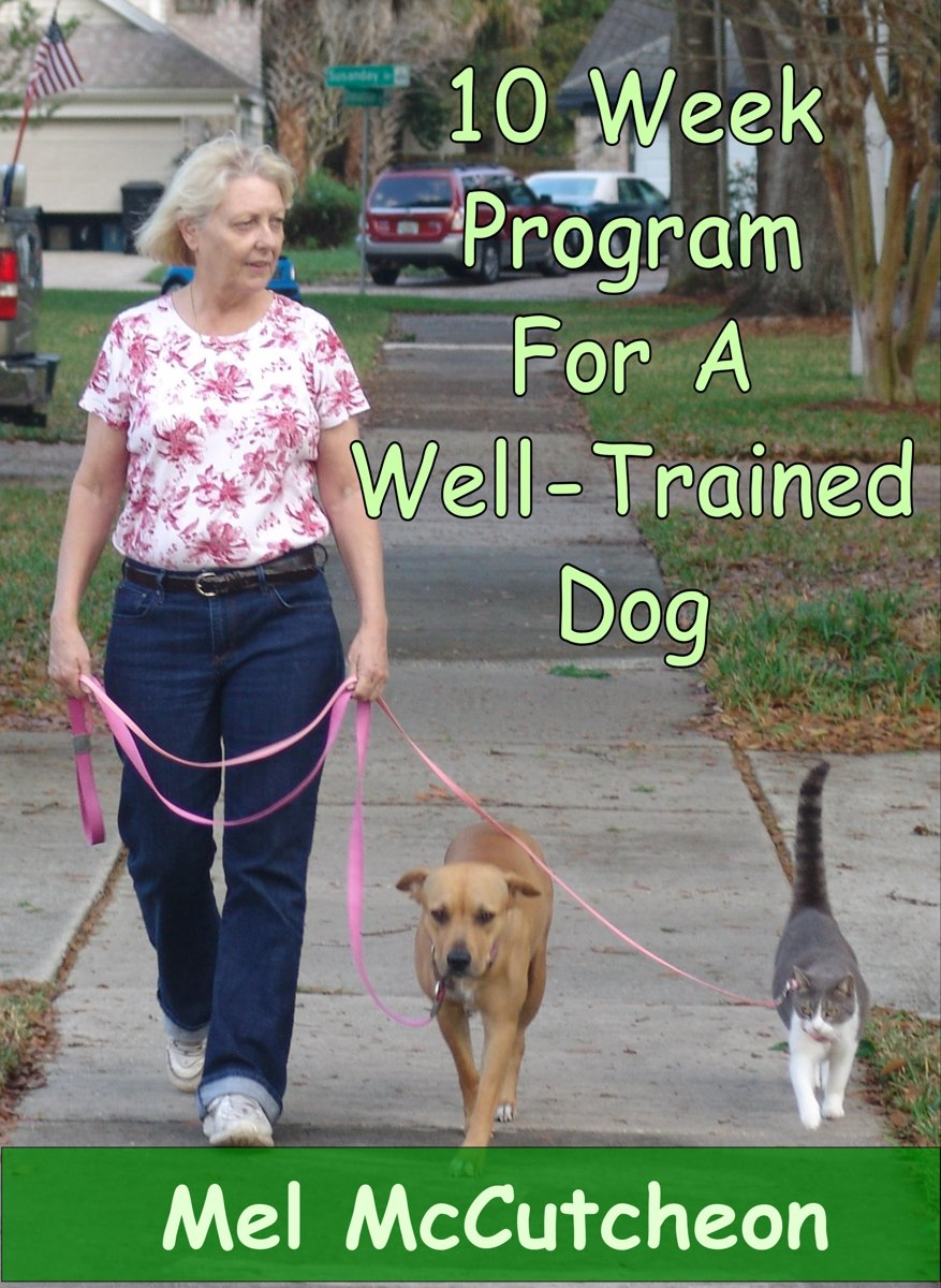 10 Week Program For A Well Trained Dog