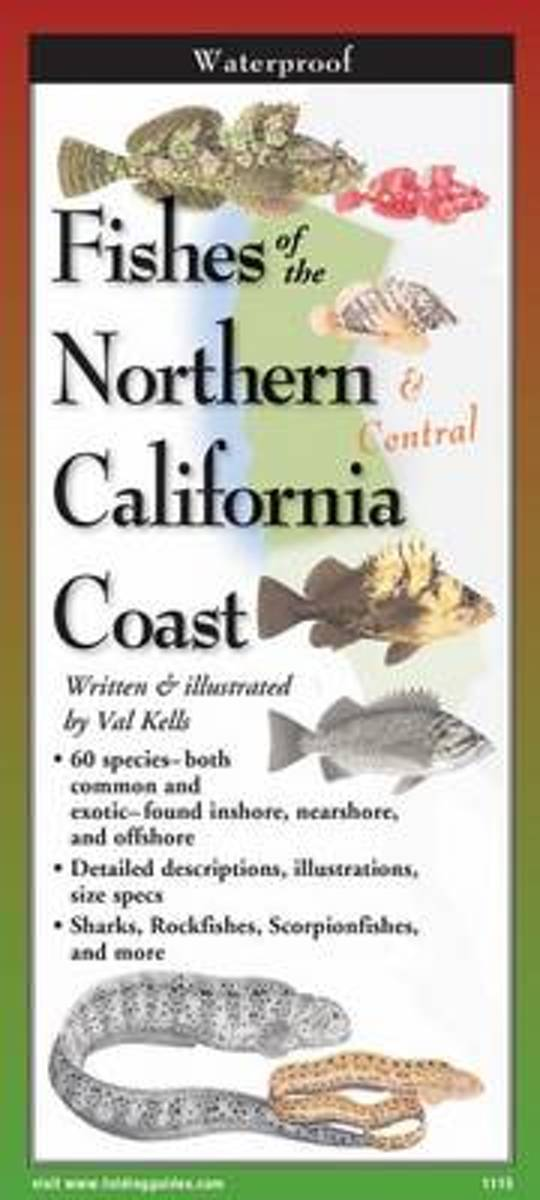 Fishes of Northern & Central California Coast