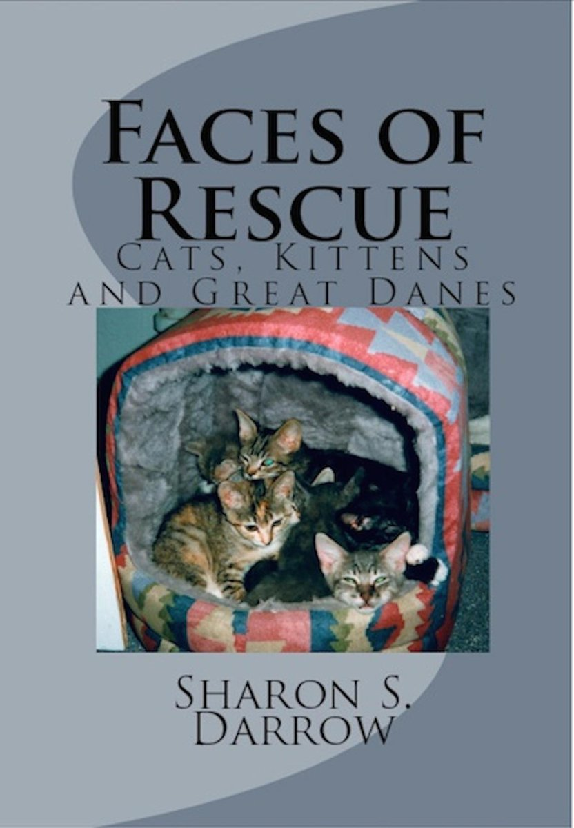Faces of Rescue Cats, Kittens and Great Danes