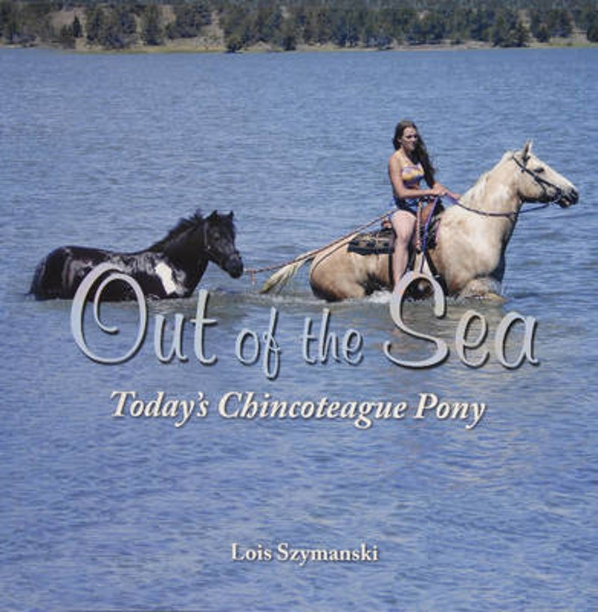 Out of the Sea, Today's Chincoteague Pony