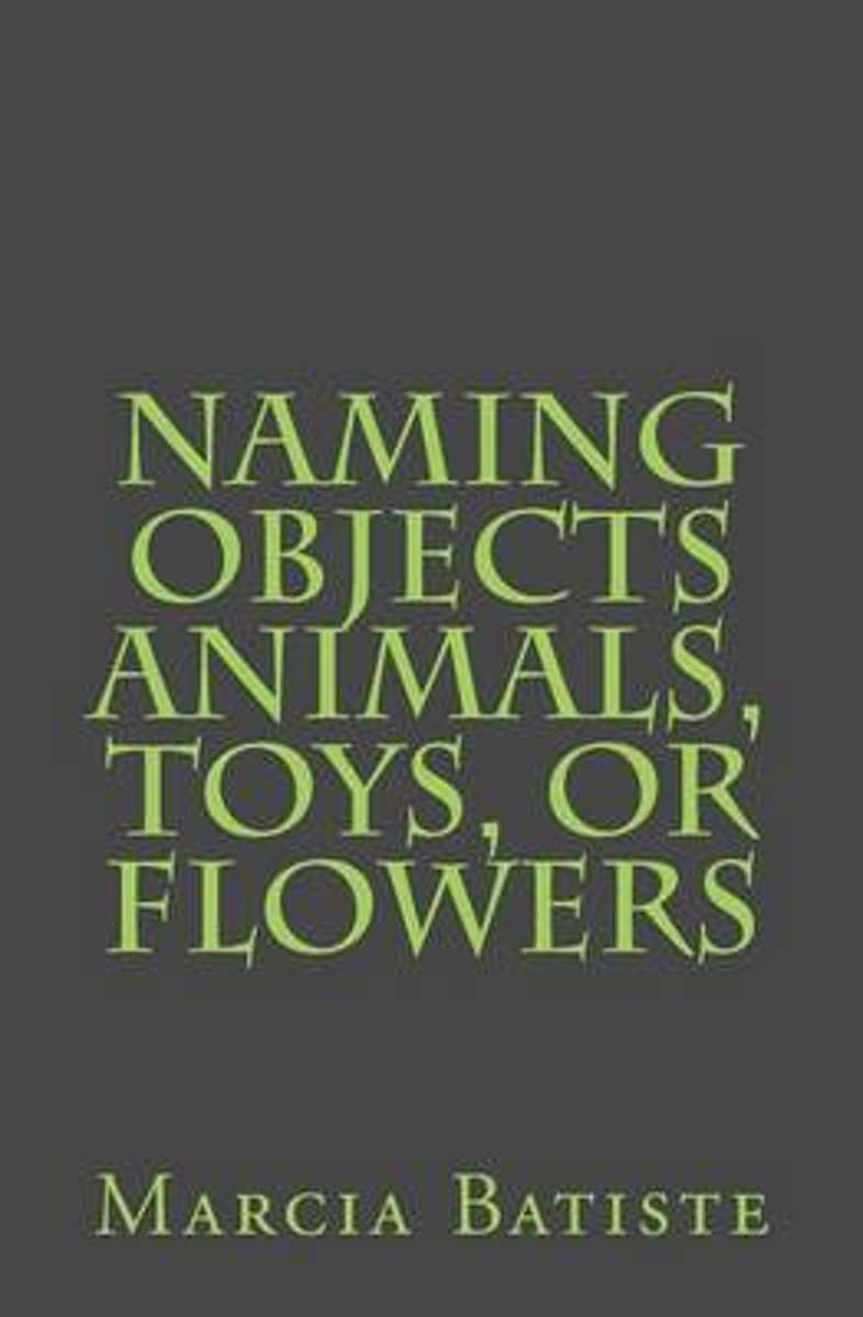 Naming Objects Animals, Toys, or Flowers