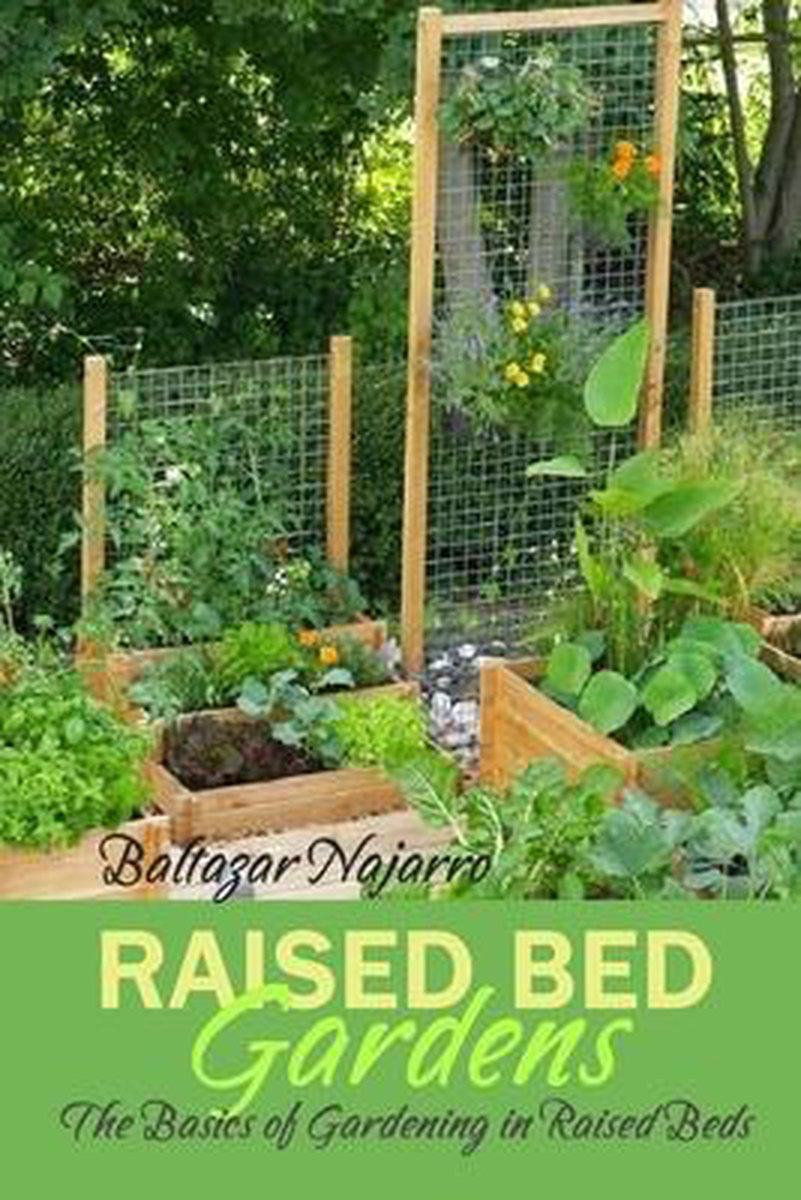 Raised Bed Gardens: The Basics of Gardening in Raised Beds
