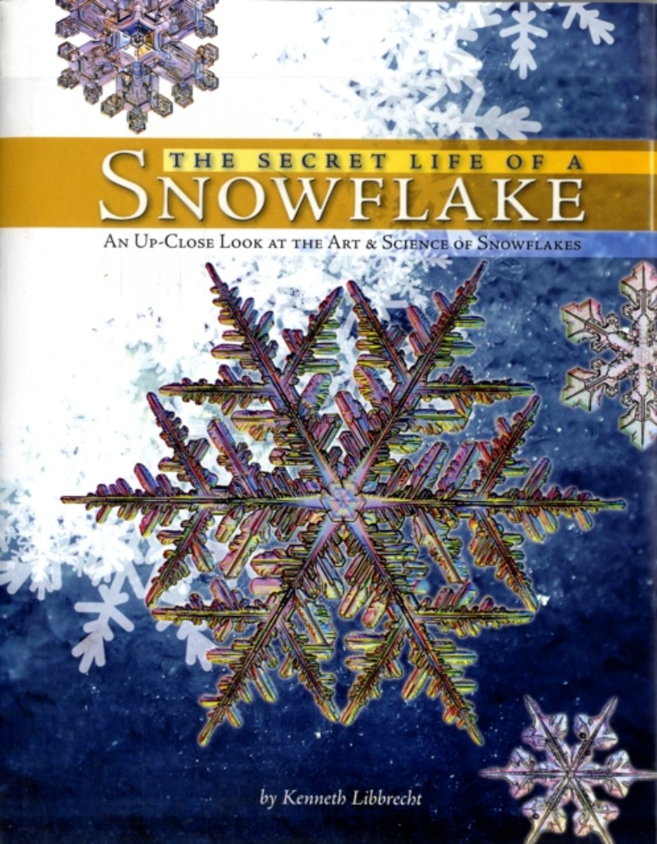 The Secret Life of a Snowflake