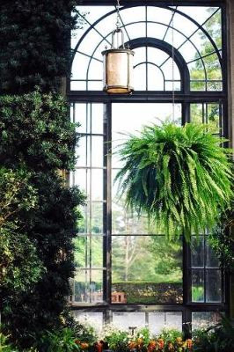 Green Plants in a Decorative Greenhouse with Arched Windows Journal