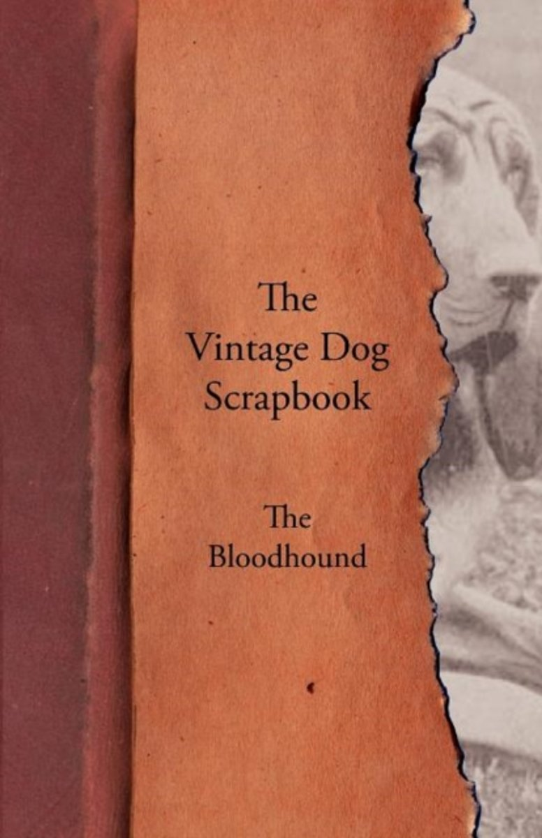 The Vintage Dog Scrapbook - The Bloodhound
