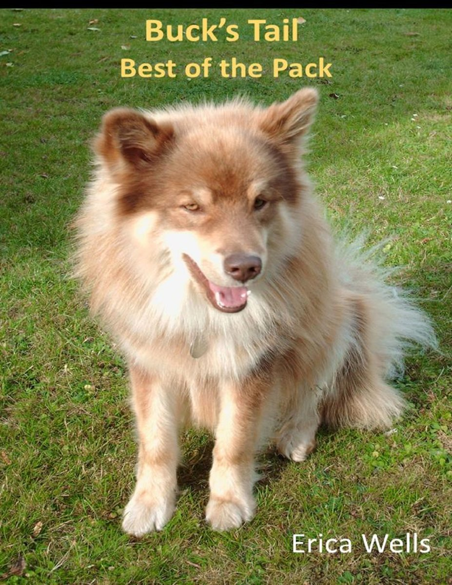 Buck's Tail - Best of the Pack