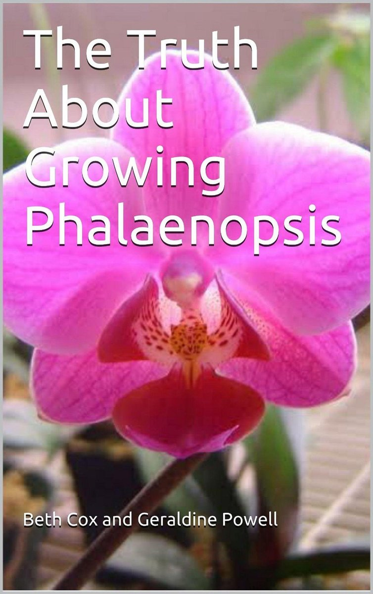 The Truth About Growing Phalaenopsis Orchids