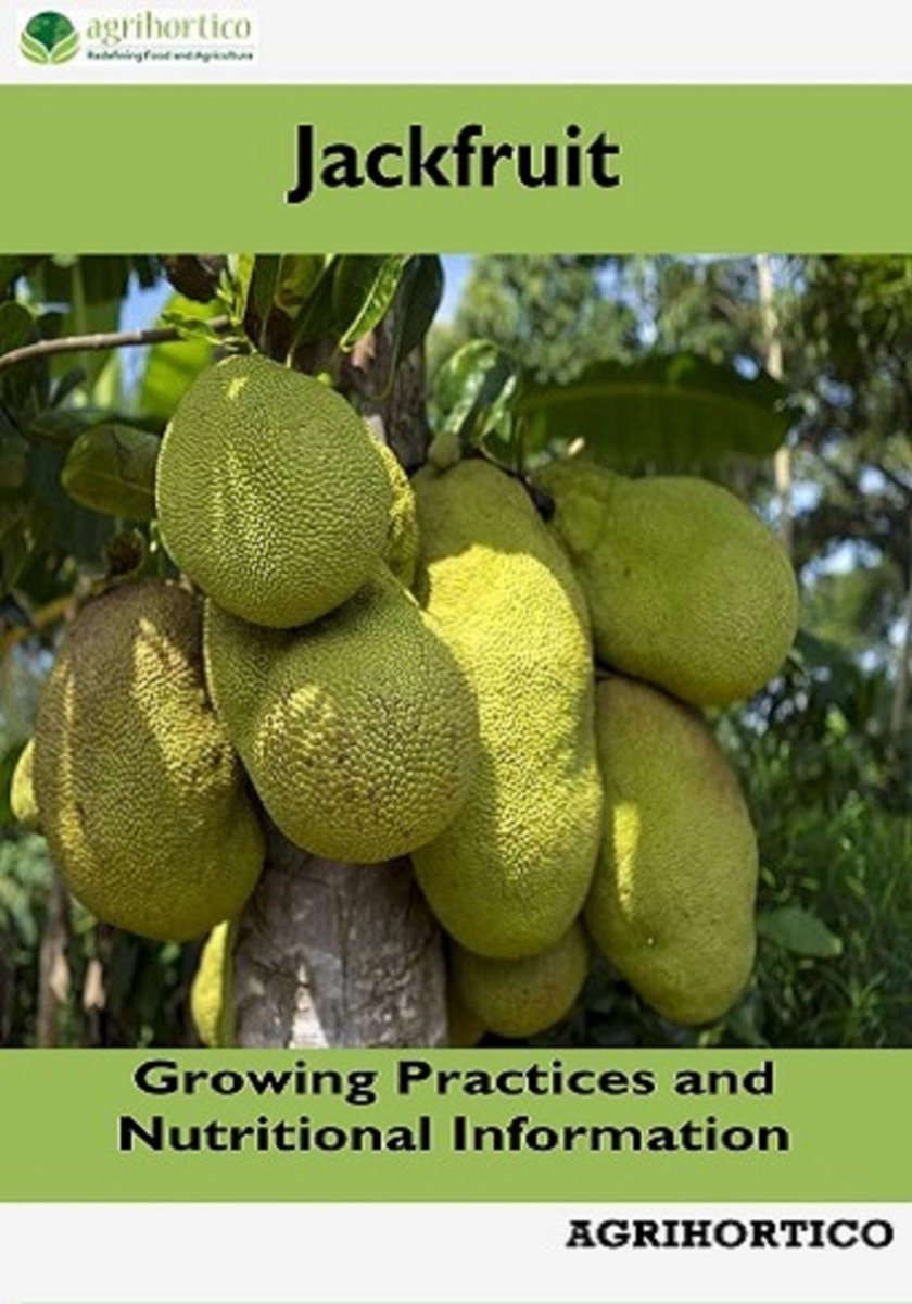 Jackfruit: Growing Practices and Nutritional Information