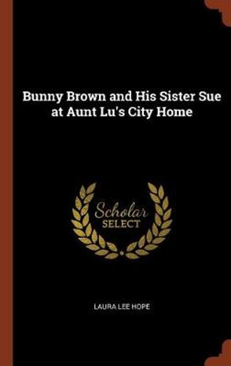 Bunny Brown and His Sister Sue at Aunt Lu's City Home