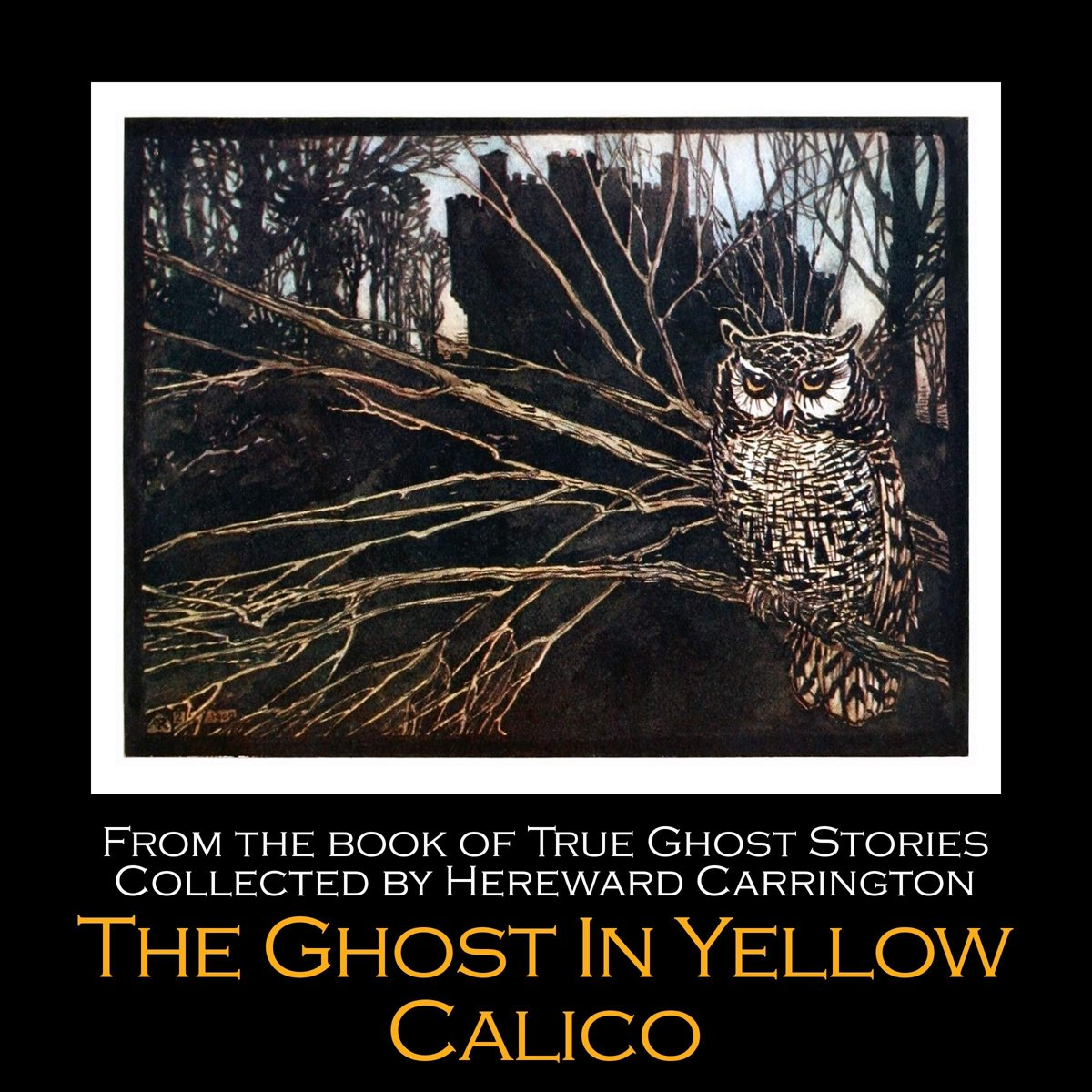 Ghost in Yellow Calico, The