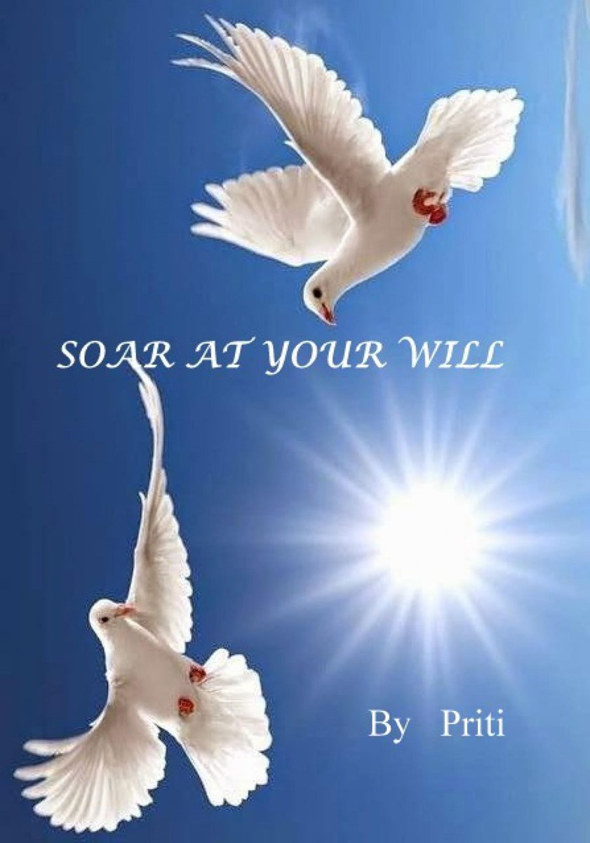 Soar at your will