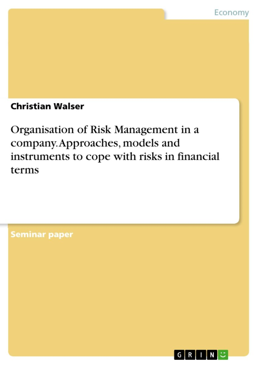 Organisation of Risk Management in a company. Approaches, models and instruments to cope with risks in financial terms
