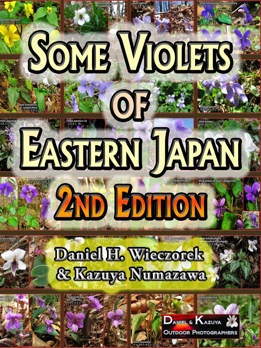 Some Violets of Eastern Japan: 2nd Edition