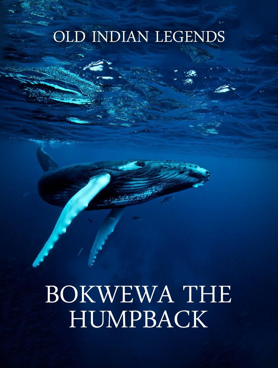Bokwewa the Humpback