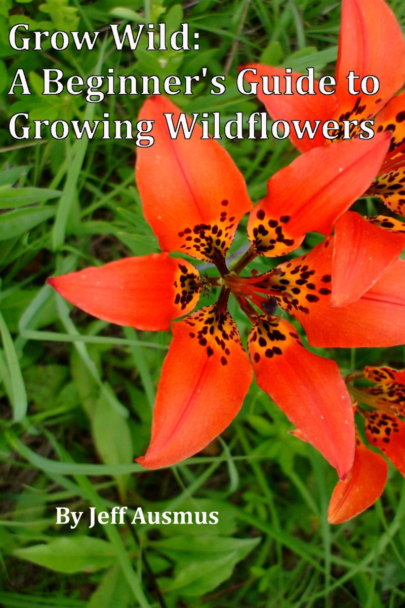 Grow Wild: A Beginner's Guild to Growing Wildflowers