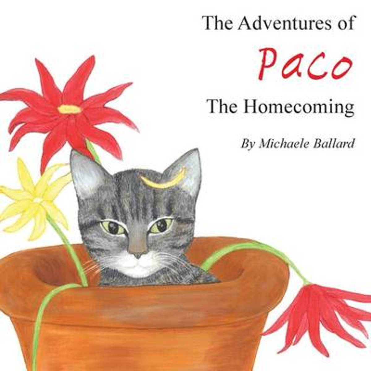The Adventures of Paco