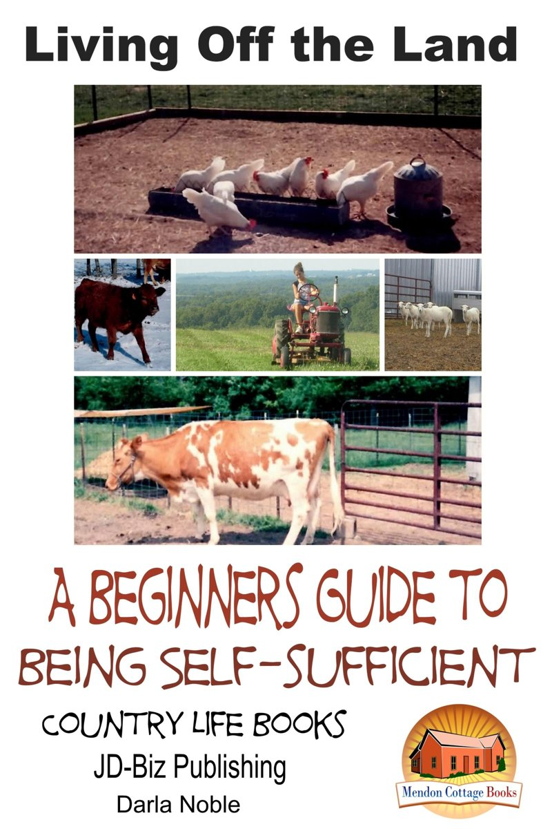 Living Off the Land: A Beginner's Guide to Being Self-sufficient
