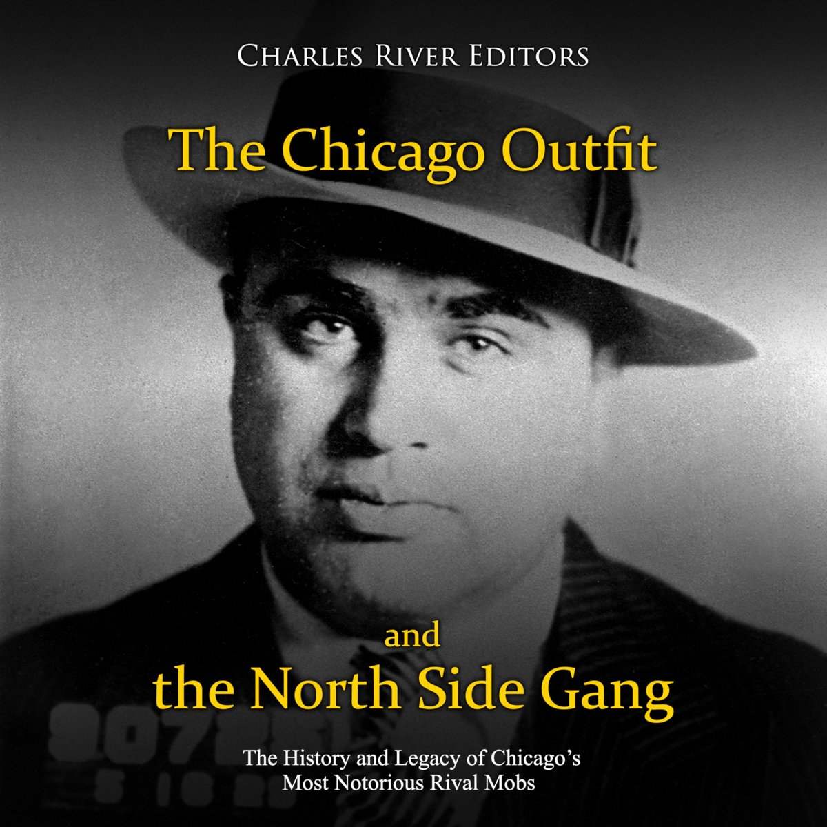Chicago Outfit and the North Side Gang, The