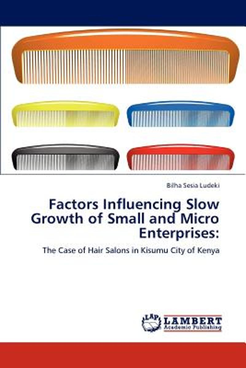 Factors Influencing Slow Growth of Small and Micro Enterprises
