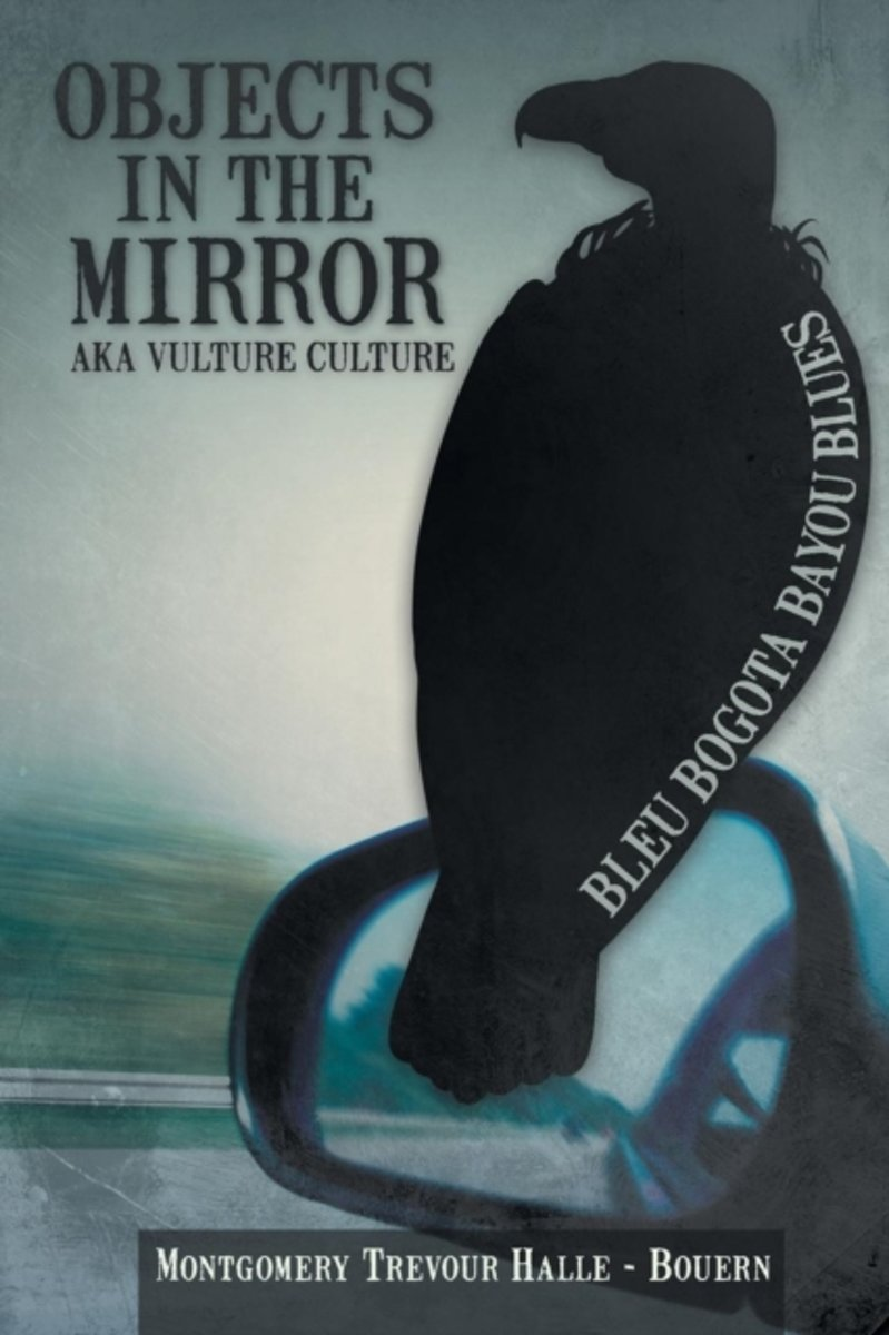 Objects in the Mirror Aka Vulture Culture
