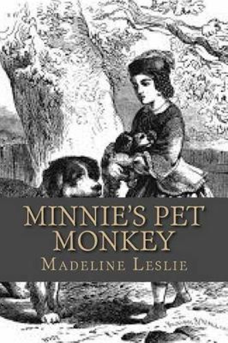 Minnie's Pet Monkey