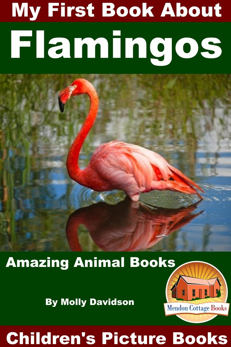 My First Book About Flamingos: Amazing Animal Books - Children's Picture Books