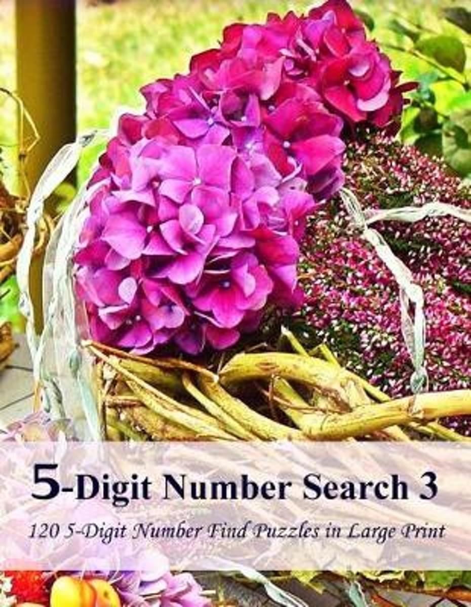 5-Digit Number Search 3