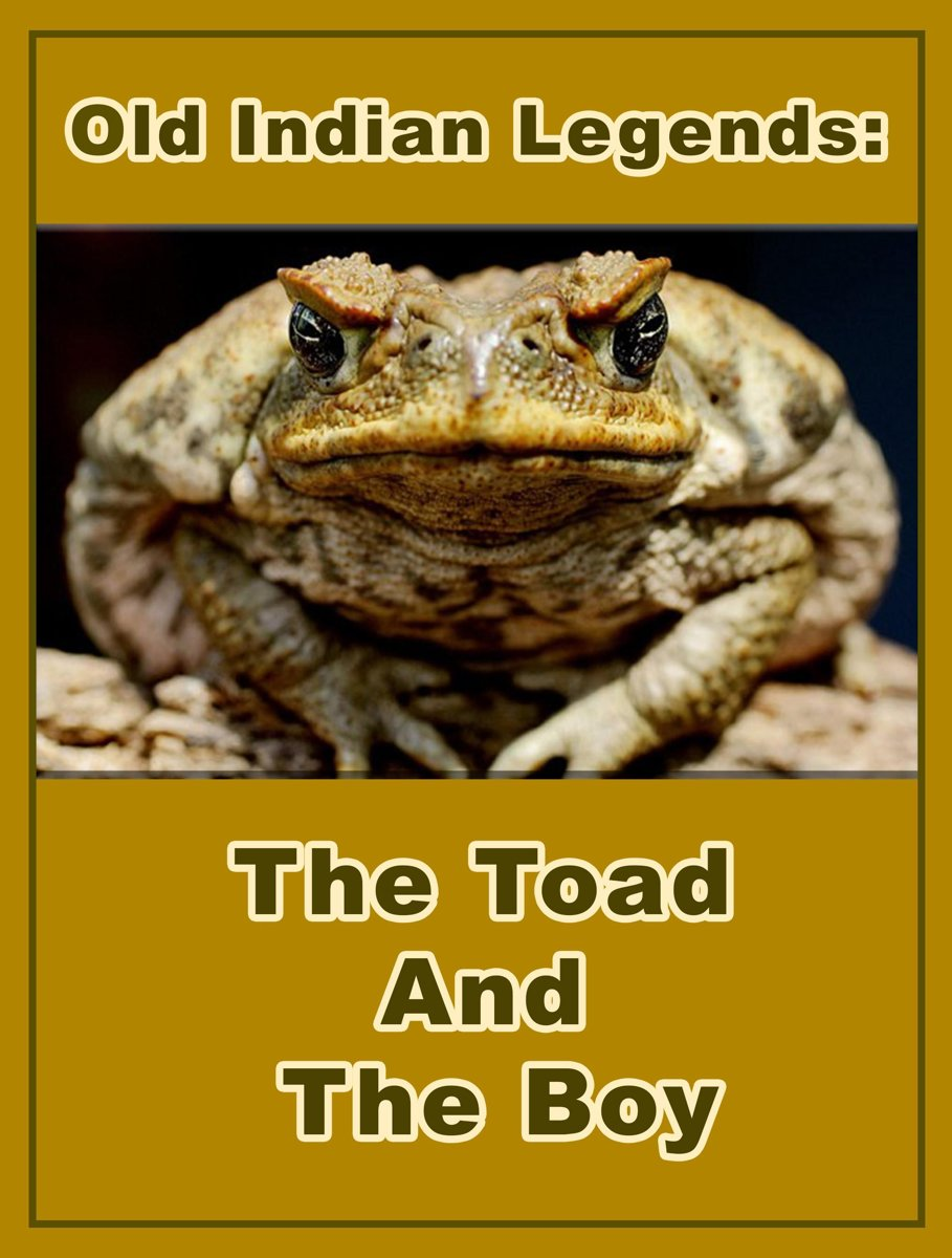 The Toad And The Boy