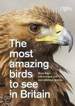 The Most Amazing Birds to See in Britain