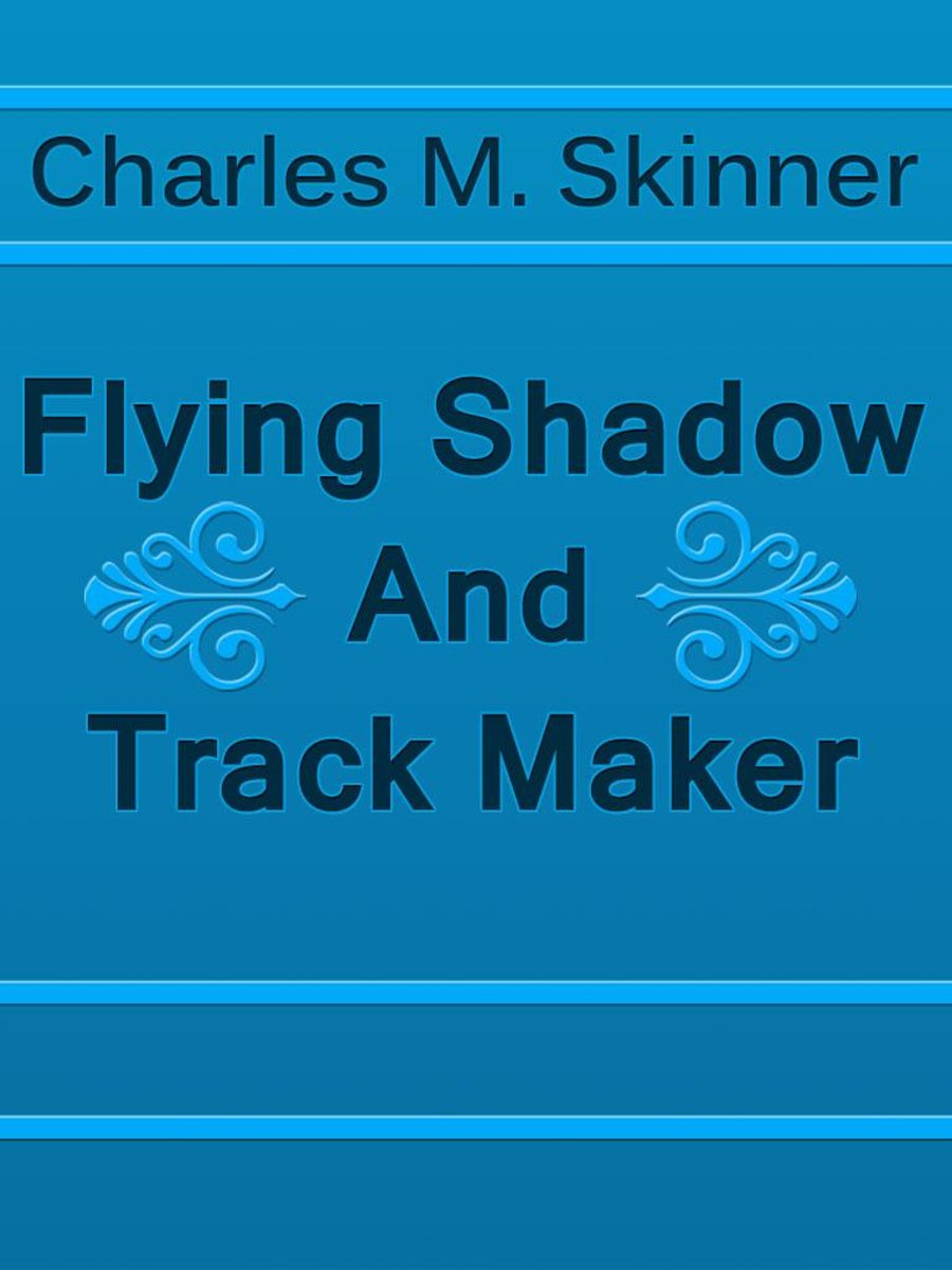 Flying Shadow And Track Maker