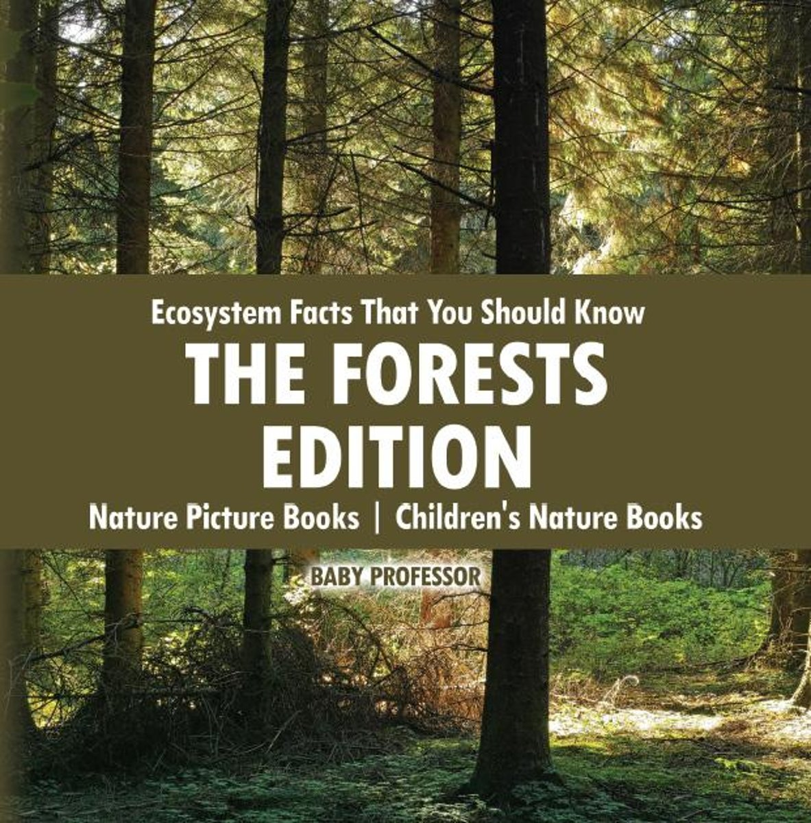 Ecosystem Facts That You Should Know - The Forests Edition - Nature Picture Books | Children's Nature Books