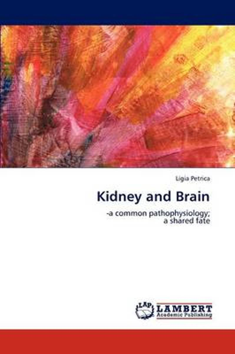 Kidney and Brain