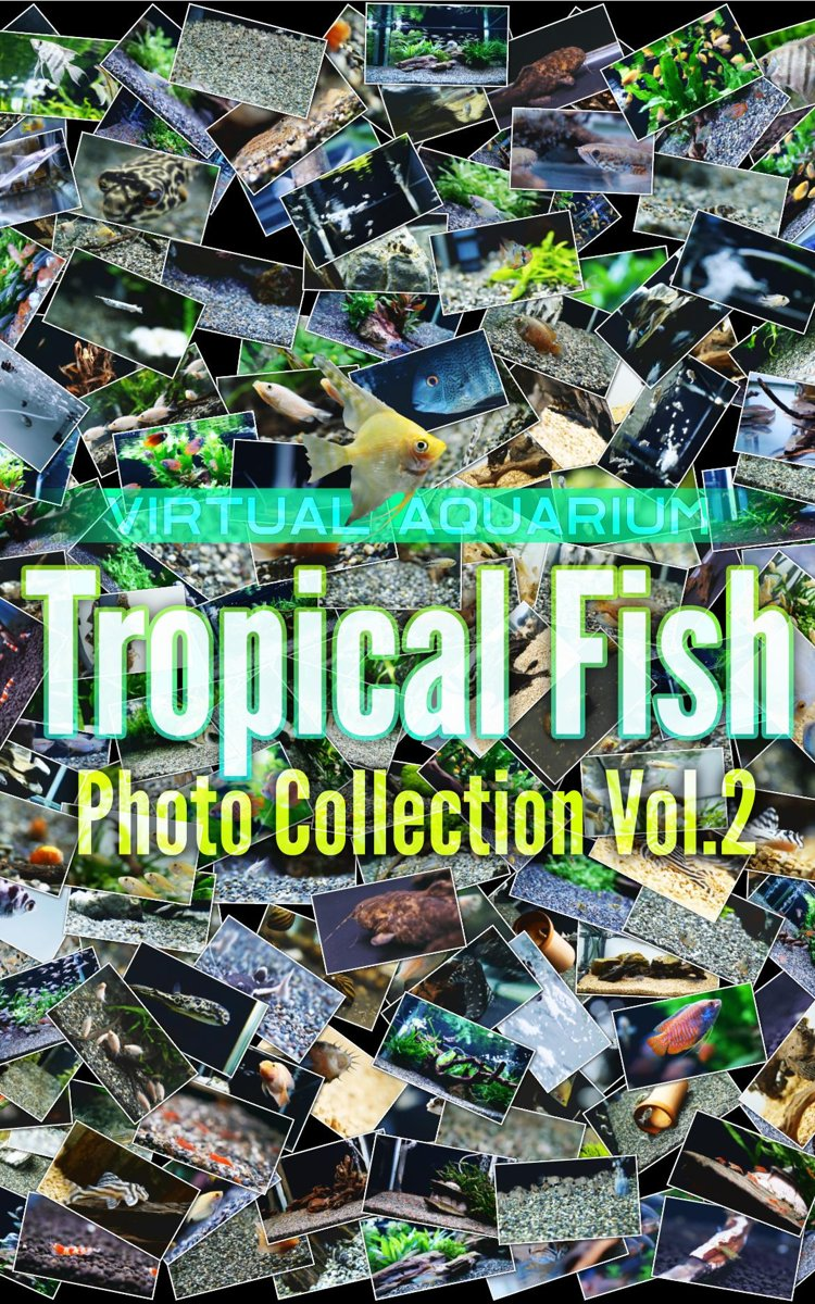 Tropical Fish Photo Collection Vol.2