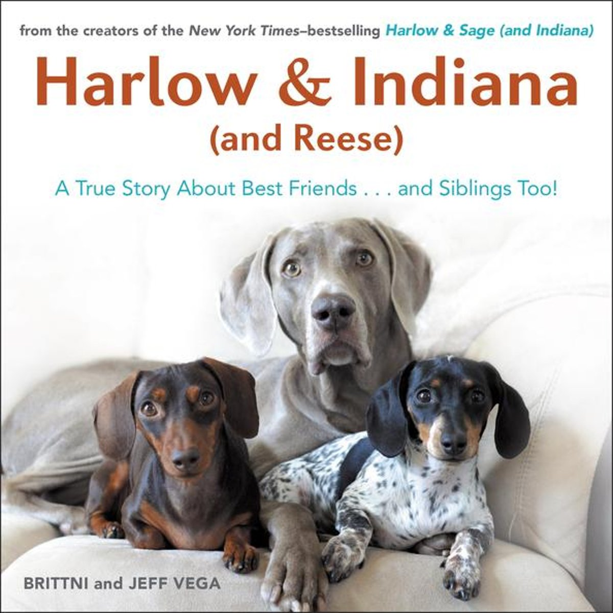 Harlow & Indiana (and Reese)