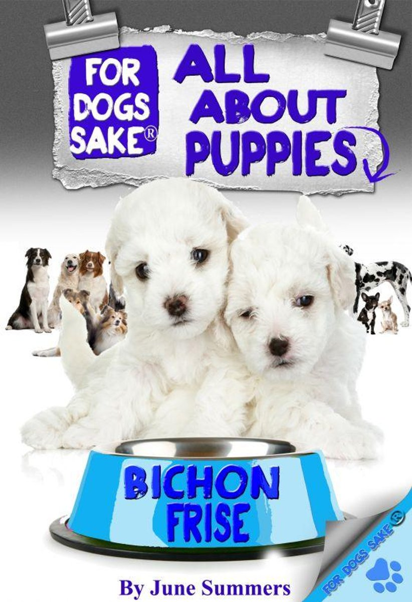 All About Bichon-Frise Puppies