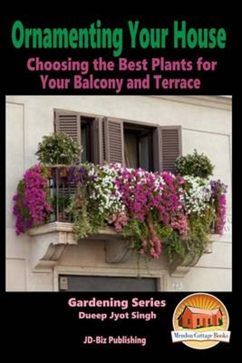 Ornamenting Your House - Choosing the Best Plants for Your Balcony and Terrace