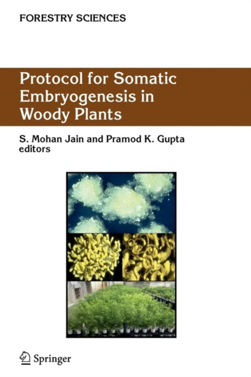 Protocol for Somatic Embryogenesis in Woody Plants